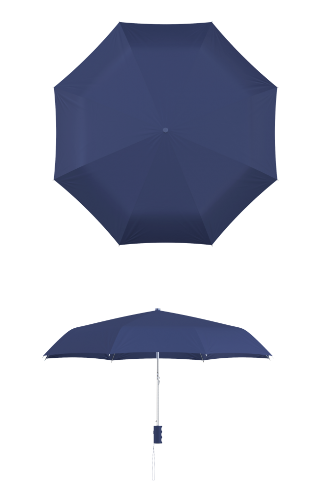 compact frame navy umbrella