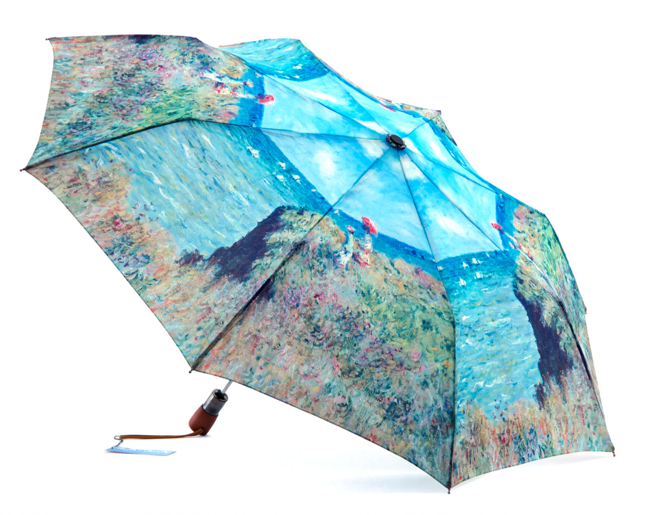 Money Woman in a cliff print umbrella