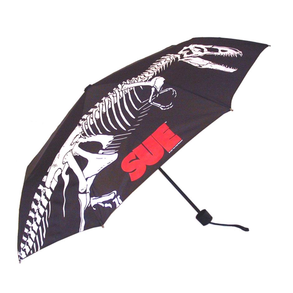 Umbrella, Auto Compact Umbrella